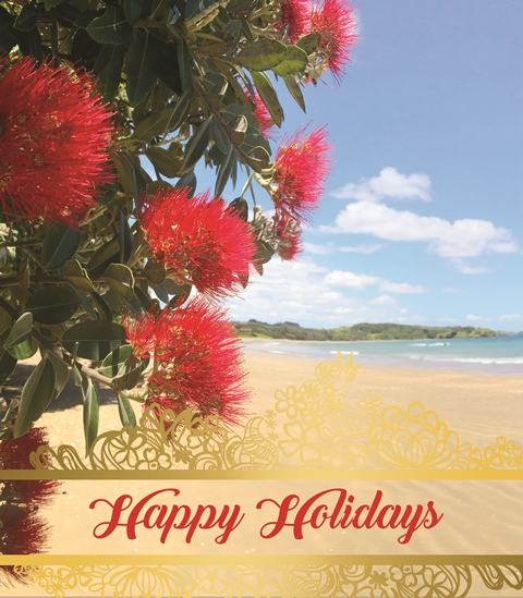 Image of beach with Happy Holidays written across the bottom