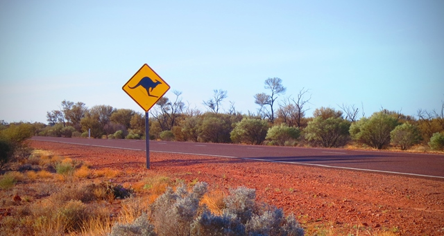 Kangaroo sign next a road in the outback