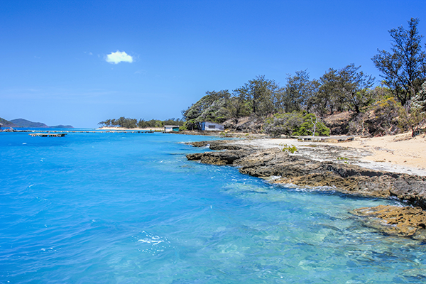 Picture of Torres Strait Islanders land