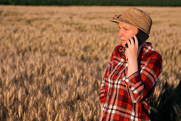 woman in check shirt talking on mobile phone, standing in field of wheat